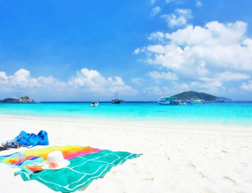 Coral Island Full Day Tour
